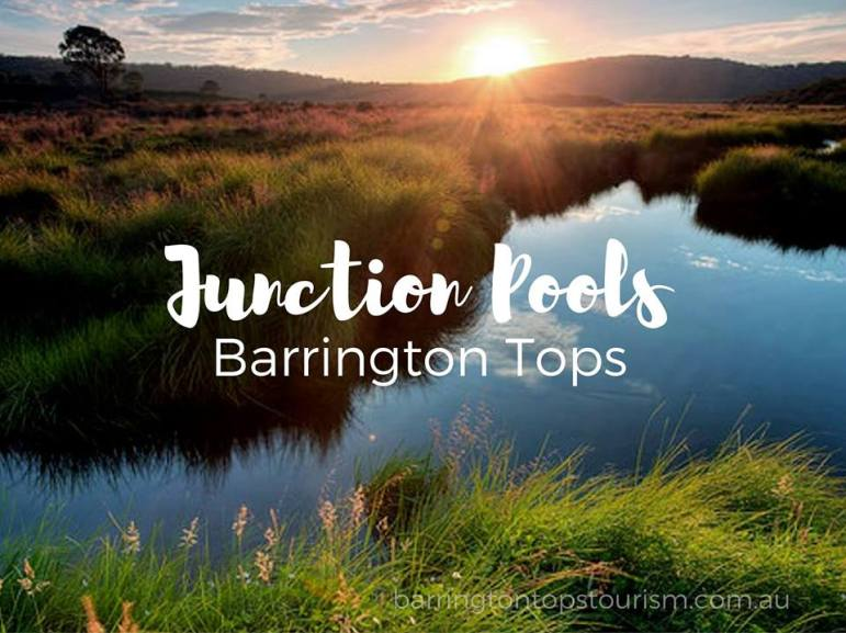 barrington-tops-tourism
